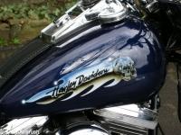 Harley-2008_1