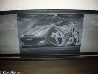 Peugeot_Windschott_206CC